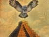 bridge_owl